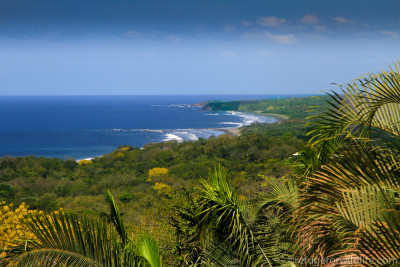 Landscape shot of Nosara Beach and Jungle