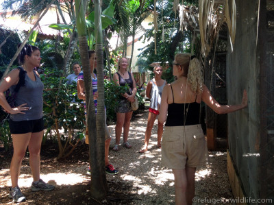 Visitors learning about the animals rescued at Refuge for Wildlife.