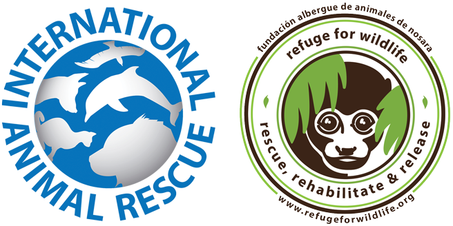 What To Do In A Wildlife Emergency Refuge For Wildlife